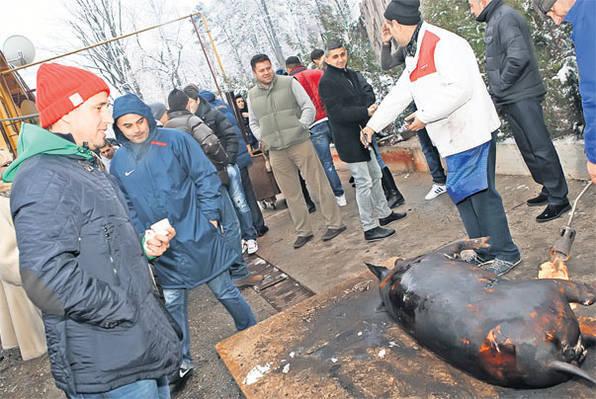 reghe-porc-craciun